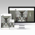 site internet conachri maine coon